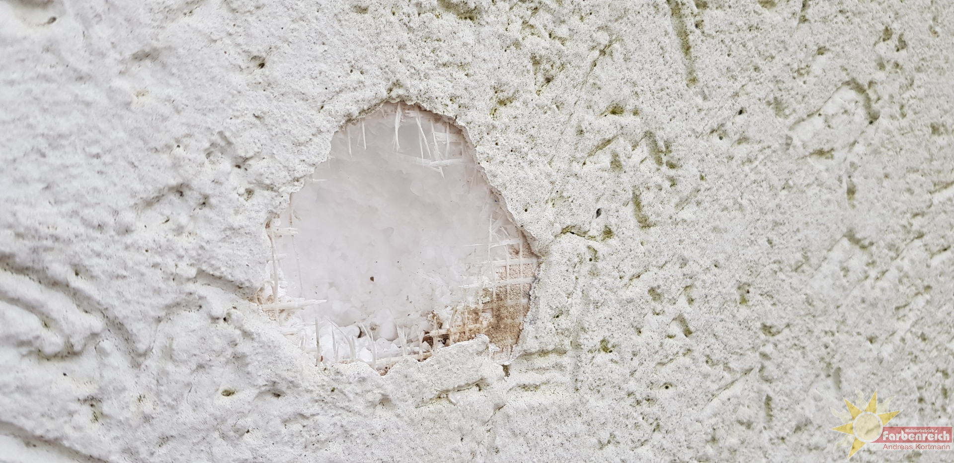 Wärmedämmverbundsystem, beiarbeiten, Verursacher ein Specht. Grünspecht oder Buntspecht stand nicht dabei.